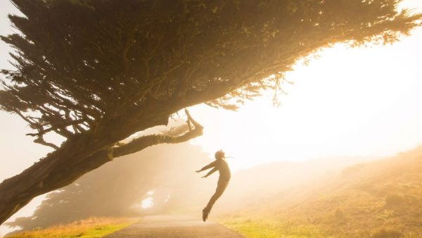A person free from anxiety and jumping under a tree