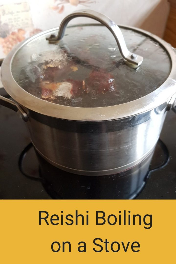 Reishi tea boiling on a stove